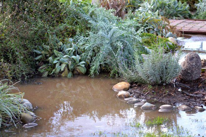 Cottage-Garden-Rains_12