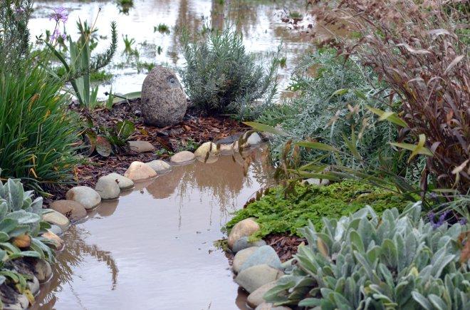 Flooded-Cottage-Garden_12