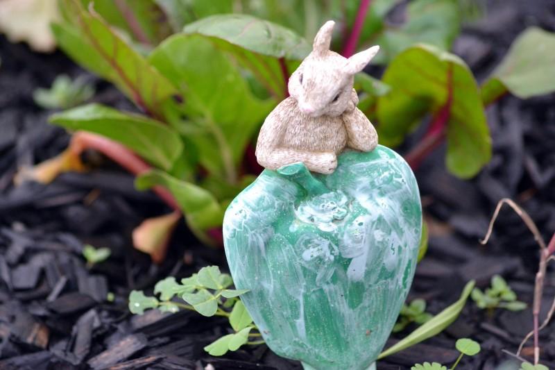 Garden-Rabbit