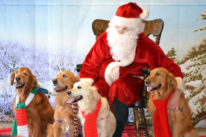 Homeward-Bound-Santa-Photos