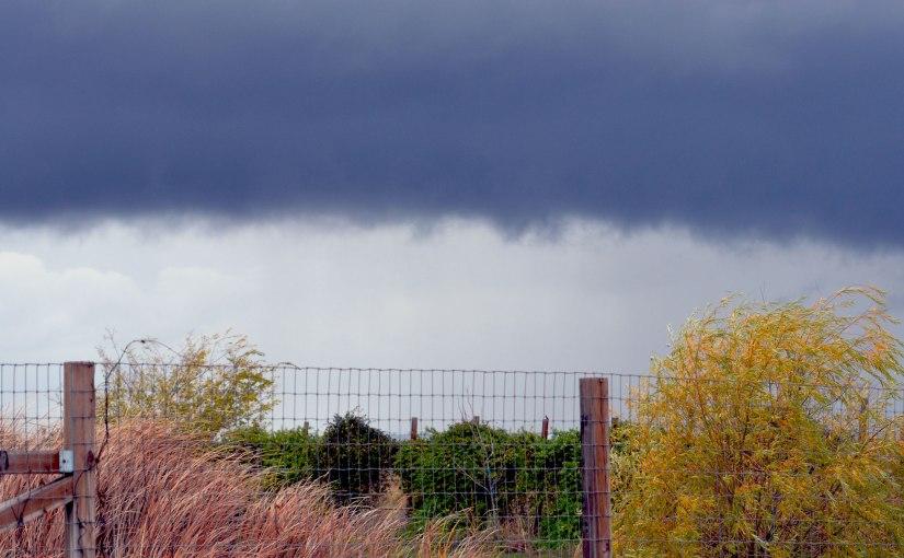 When it Rains:Walk