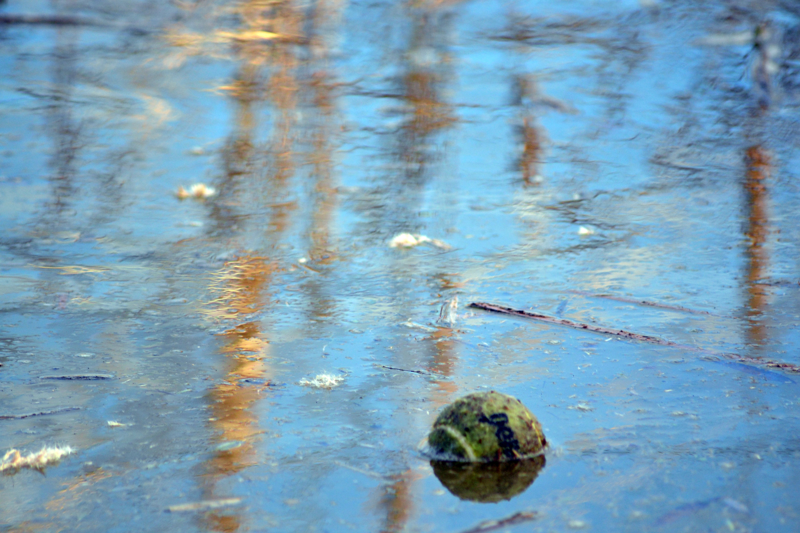 Tennis ball on pond surface to stop freezing