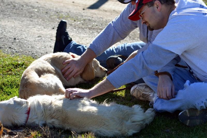 Breeder-Pups-25_2_13