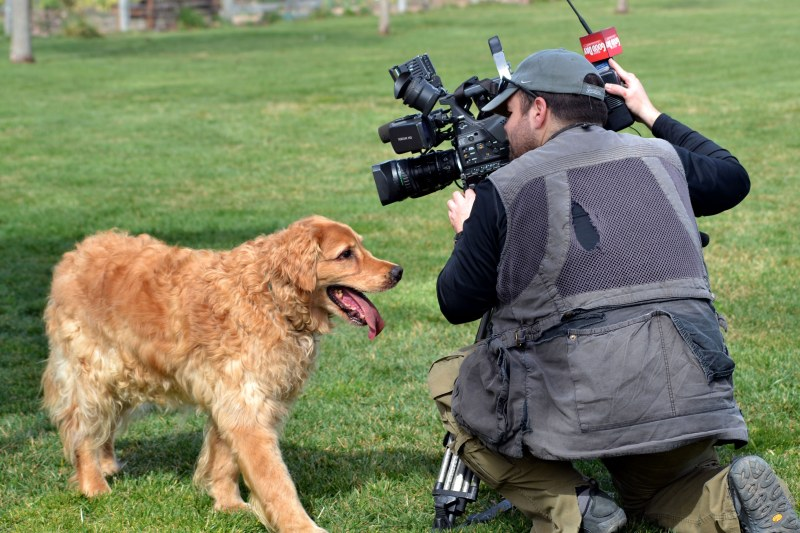 Bogey_Cameraman