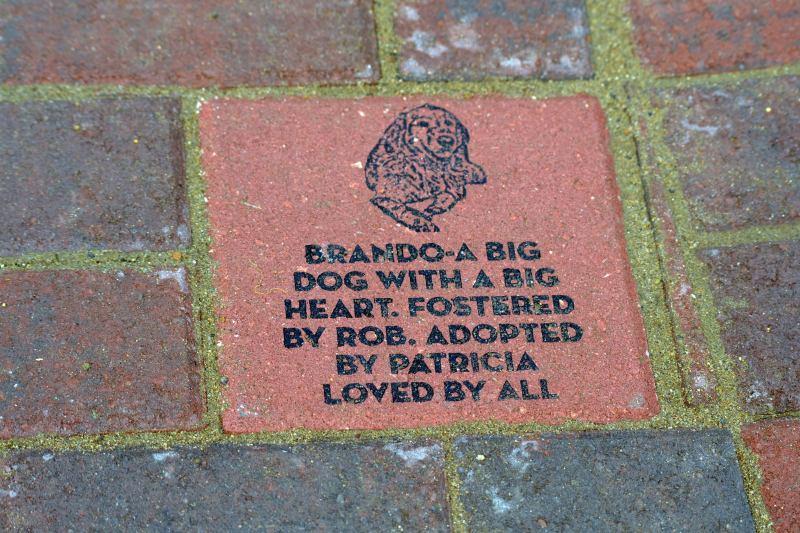 Brando_Brick