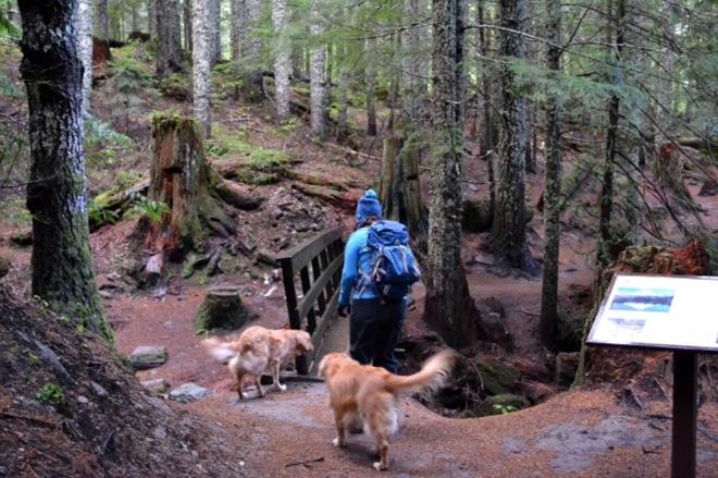 Sadie-hiking