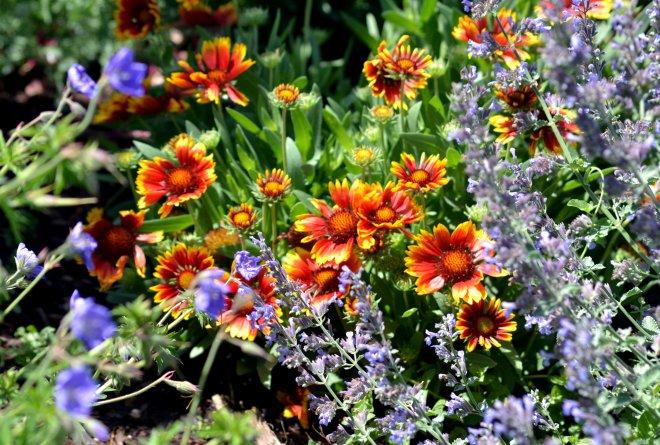 Garden-Bouquet2_5_13