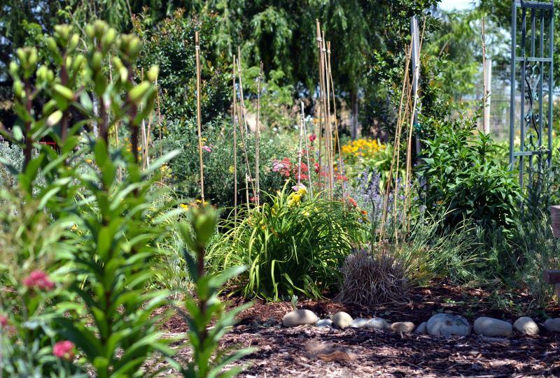 Garden4_5_13