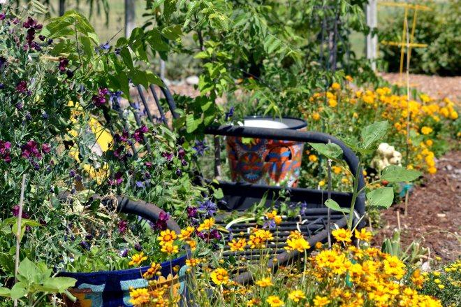 Maria's-garden-5_24_13