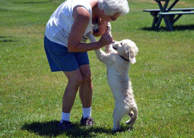 Blind-Puppy-Love-2