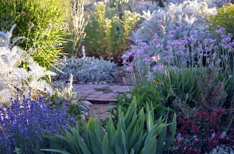 Cottage-Garden-1_6_13