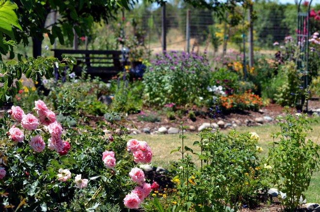 Garden-2-7_13