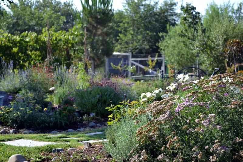 Garden-4-7_13