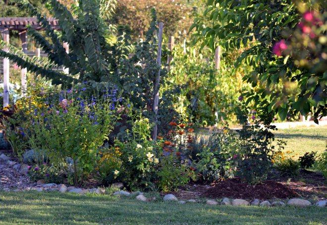 Butterfly-Garden-Evening-8_13