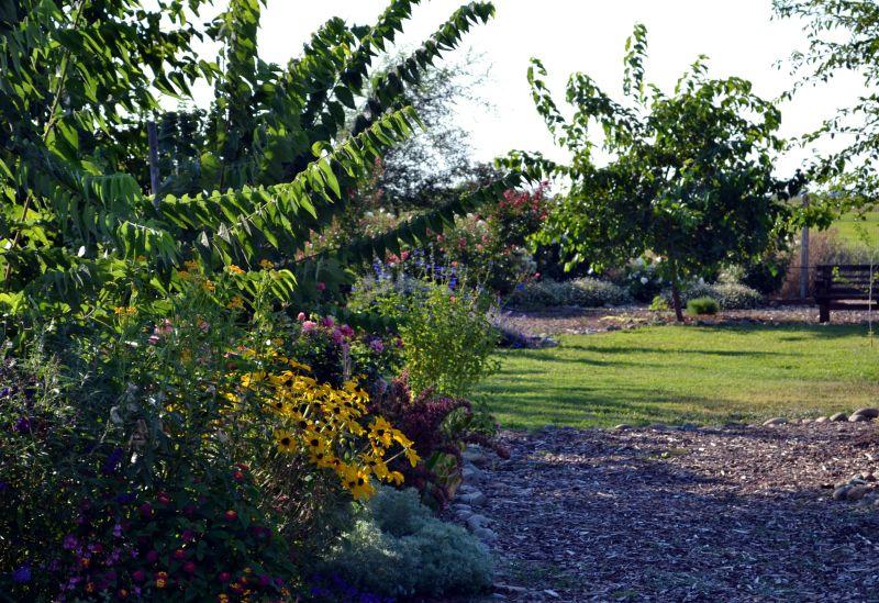 Garden-2-8_13