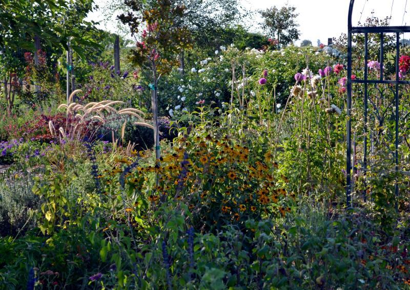 Perennial-Garden-Evening-8_13