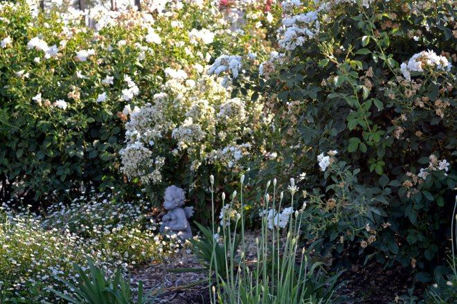 White-Garden-Evening-8_13