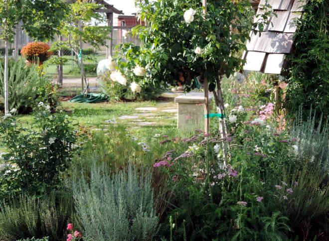 Garden-3-9_29_13