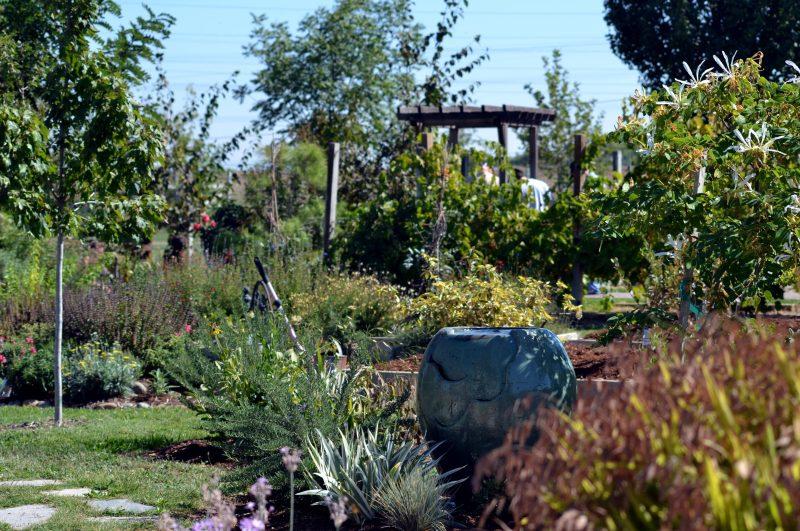 Garden4-9_13