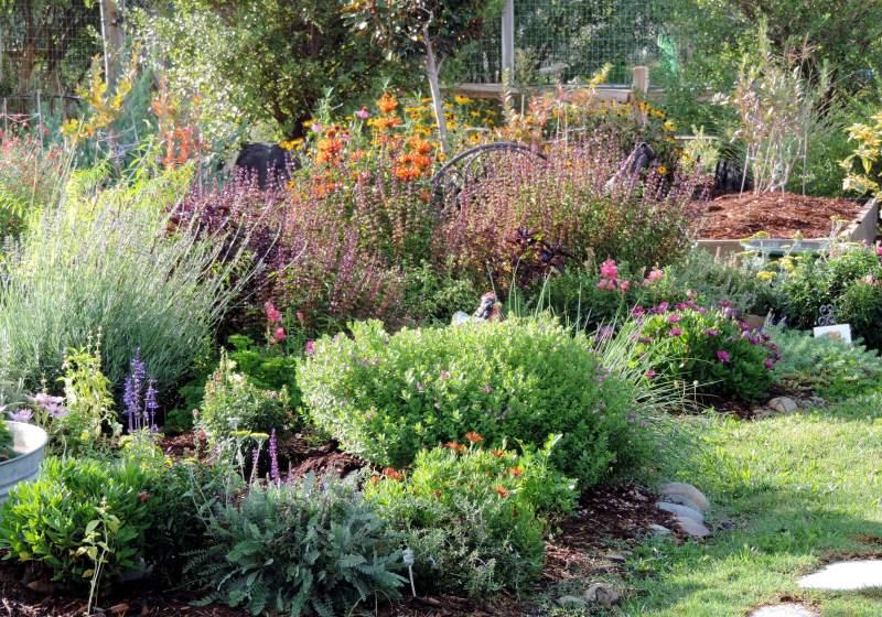 Herb-Garden-2-9_29_13
