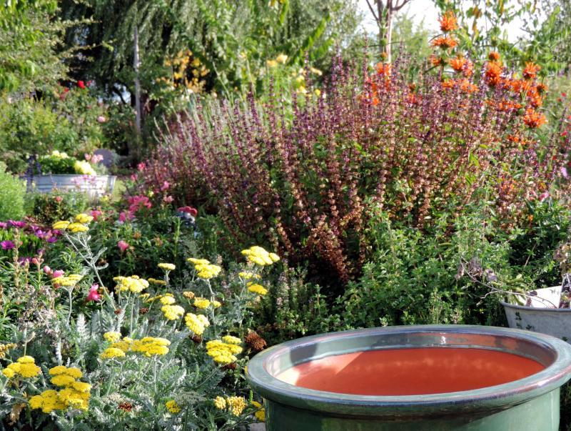 Herb-garden-9_29_13