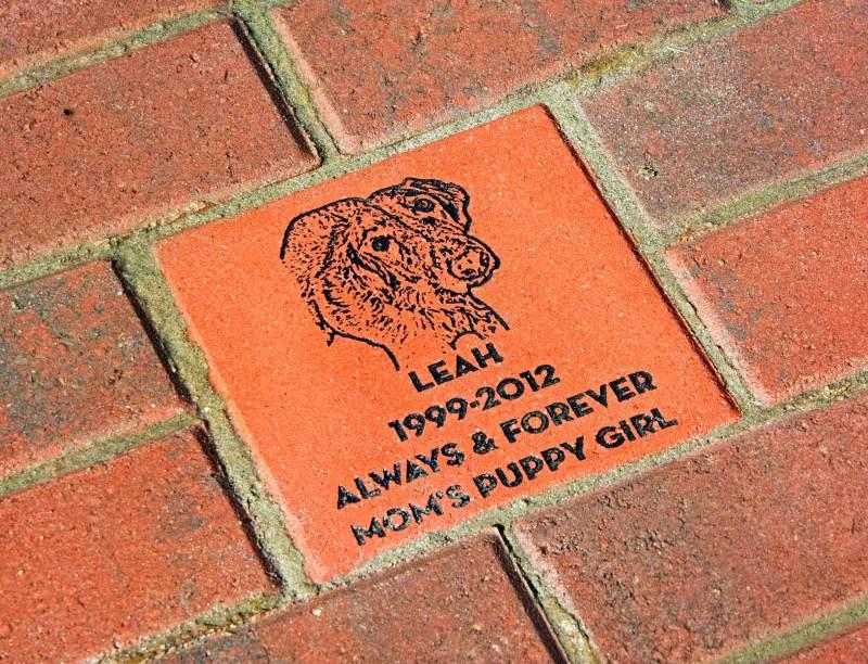 Leah-Brick