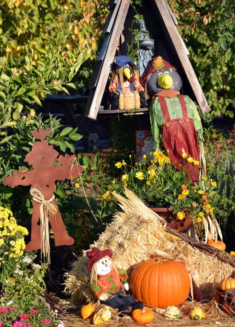Fall-Festive-Garden