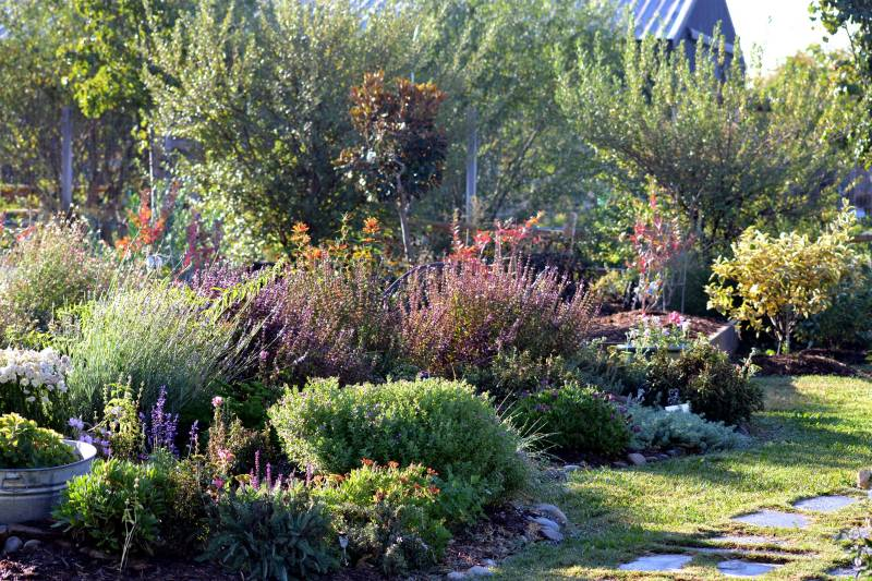 Garden-Fall3-10_13