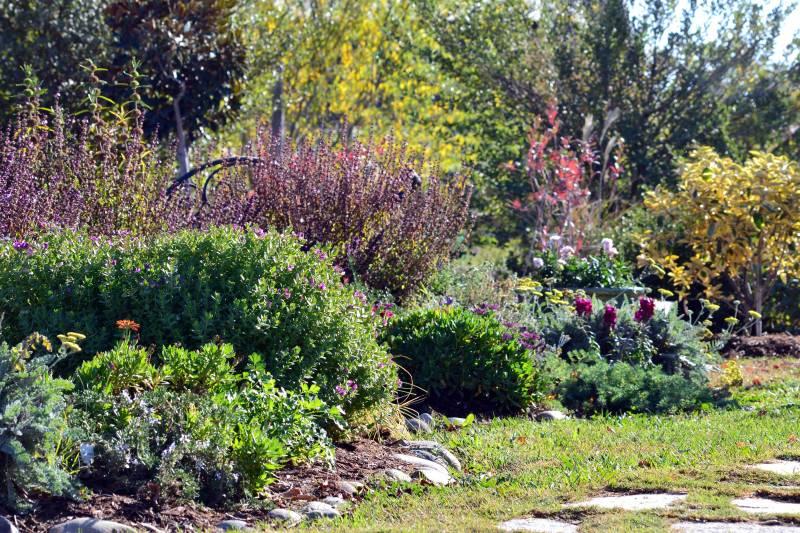Herb-Garden-Fall-11_17_13