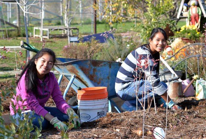 Youth-Volunteers-Planting