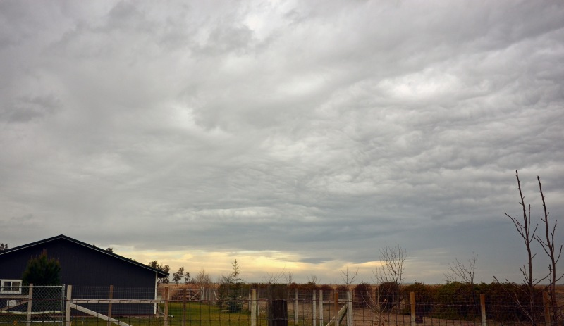 grey-skies-1_14_14