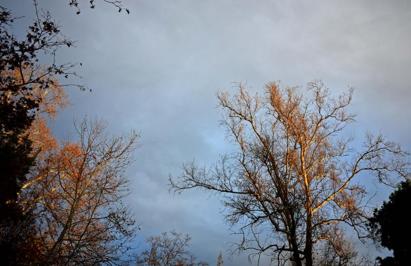 grey-skies-3_14_14