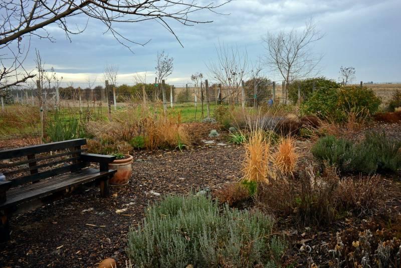Grey-Skies-Garden-1_11_14