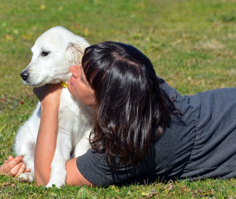 Puppy-Adopt4-1_14