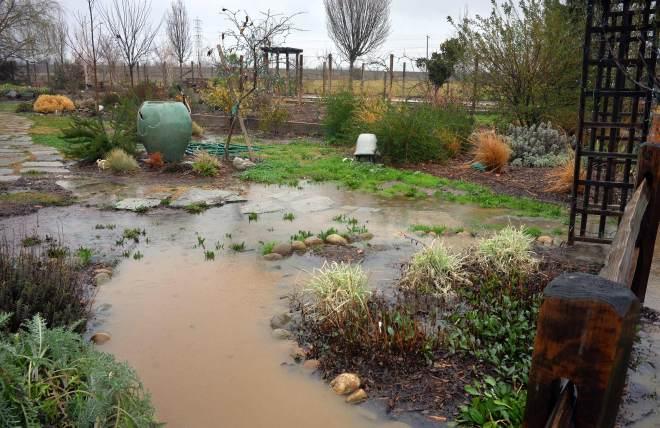 Garden4_Rain_2_14
