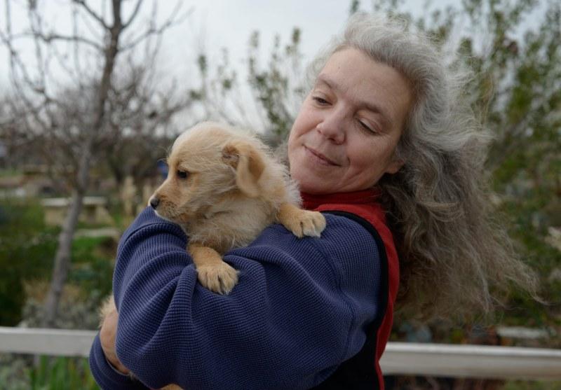 Susan-Puppy_DSC9242