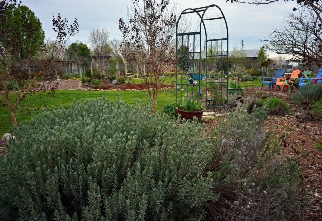 Garden_3_14_DSC_0316