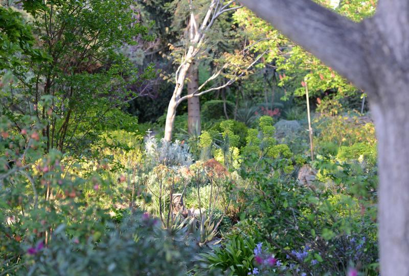 WPA-Garden_DSC_9697