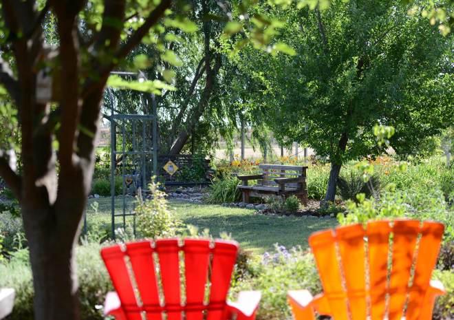 Garden_DSC_4615