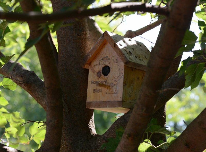 Bird-House_DSC_0552