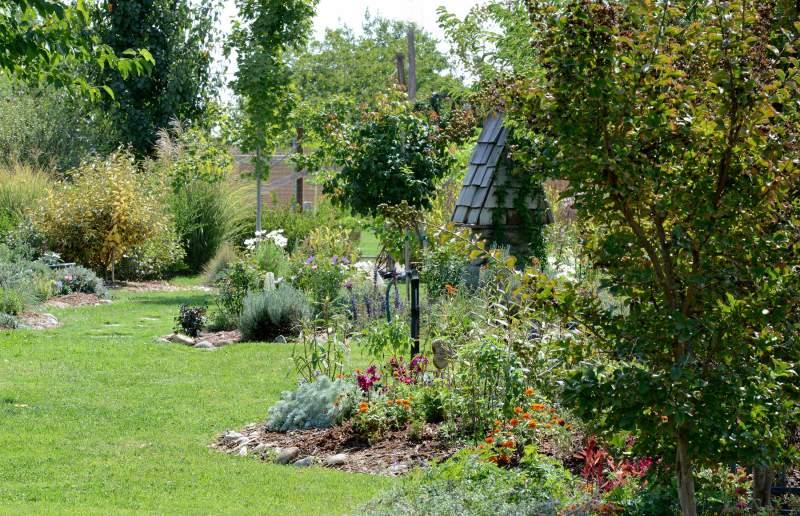 Garden_DSC_4176