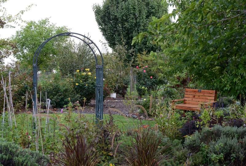 Garden_DSC_4714