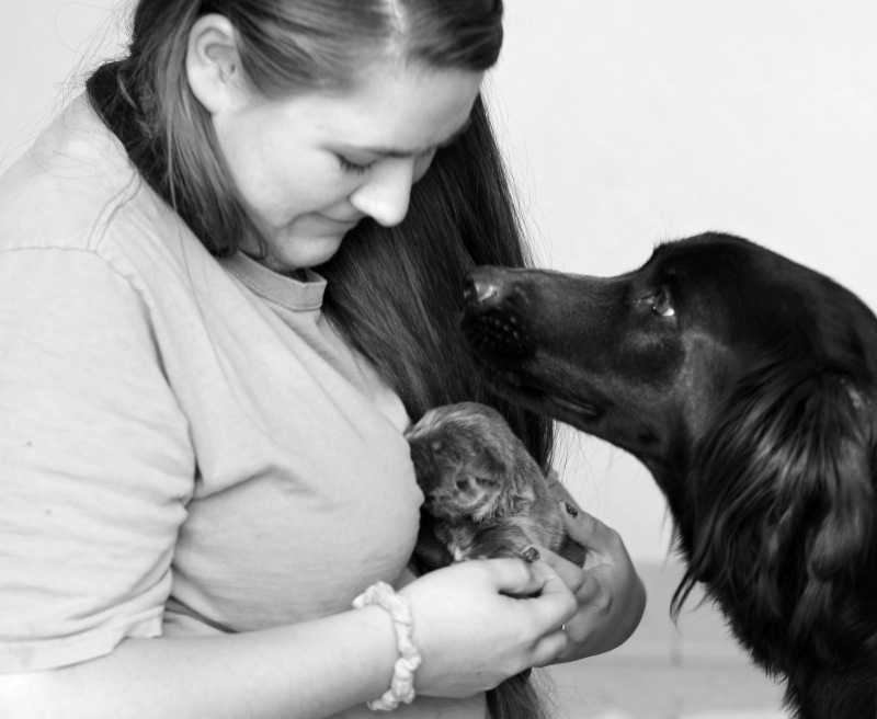 Mom_Puppy_BW_DSC_3251