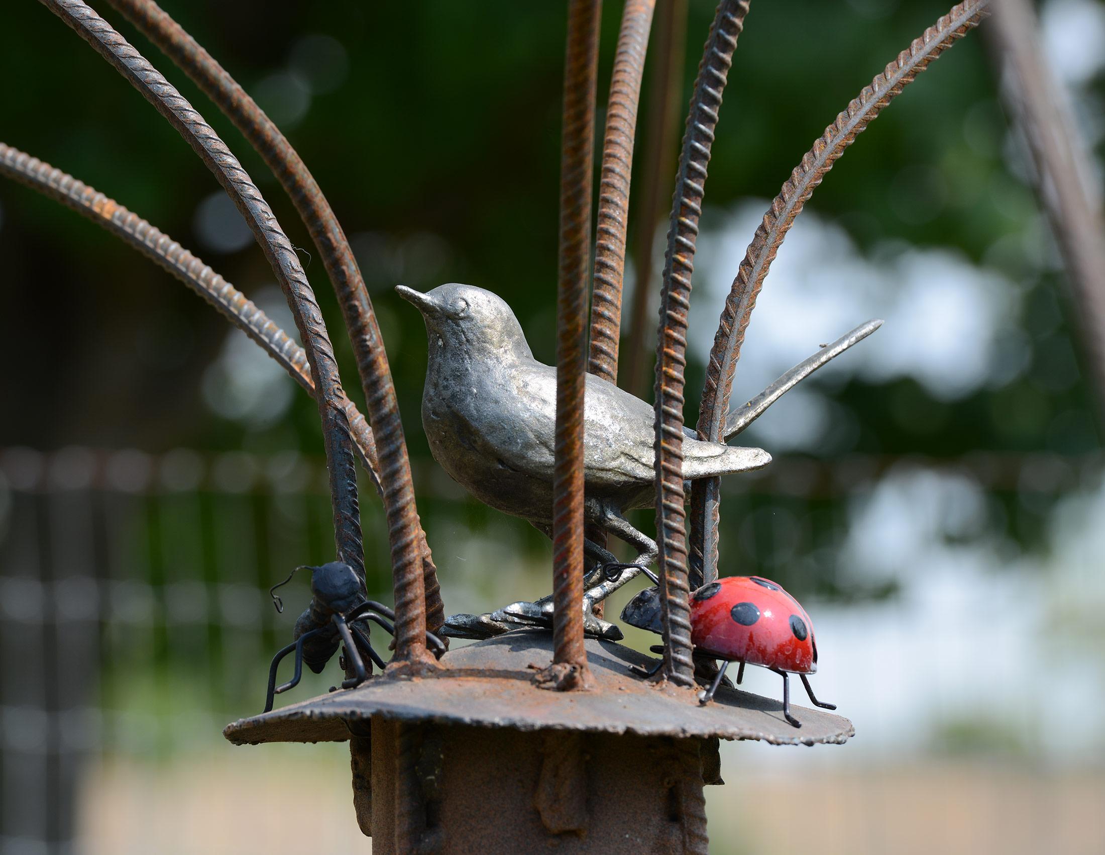 Tree_Bird_DSC_4044
