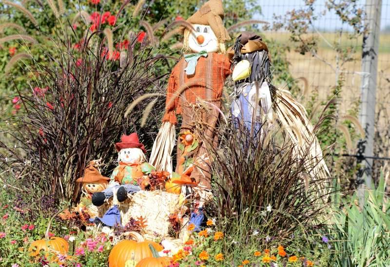 Fall-Decorations_DSC_6299