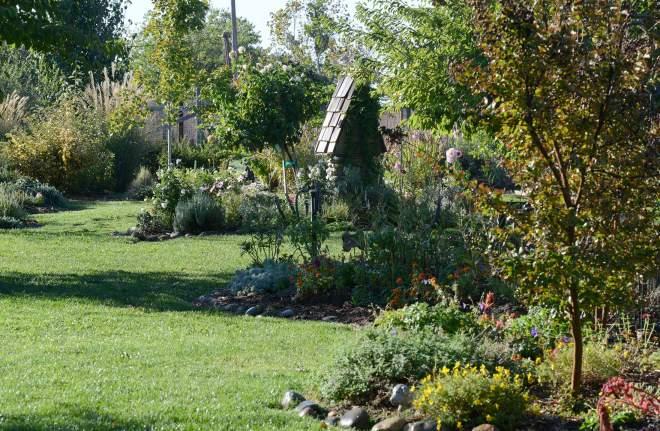 Garden_DSC_6382