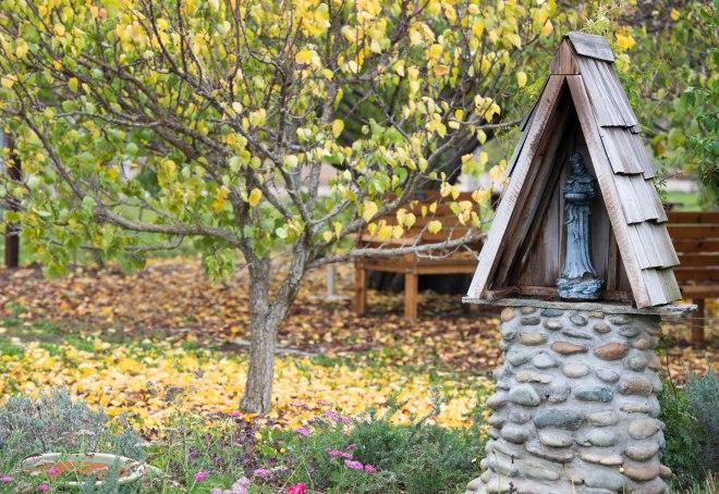 Garden_Fall_DSC_9171