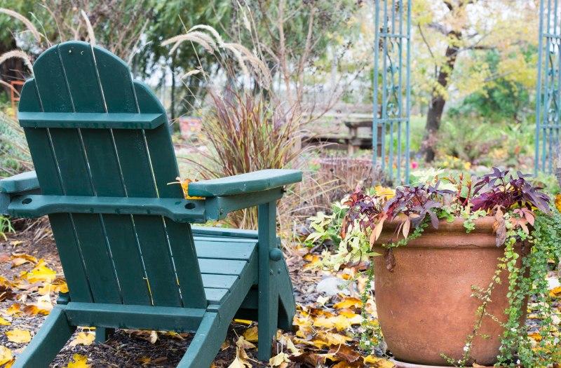 Garden_Fall_DSC_9918