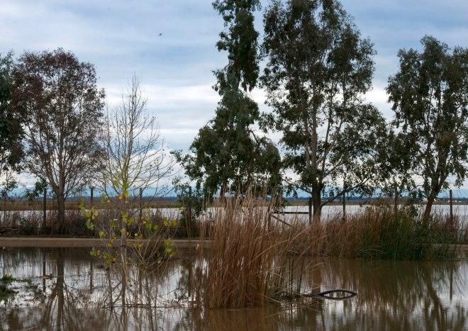 December_Flood_DSC_0424