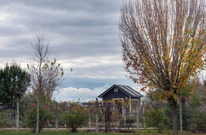 December_Grey Skies_DSC_0426